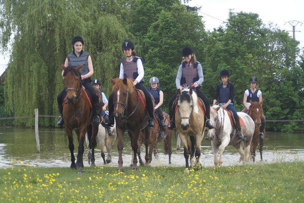 centre equestre amilly